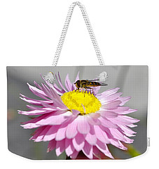 Weekender Tote Bag featuring the photograph Pollination by Cathy Mahnke