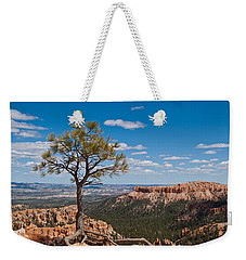 Ponderosa Pine Tree Clinging To Life On Canyon Rim Weekender Tote Bag by Jeff Goulden