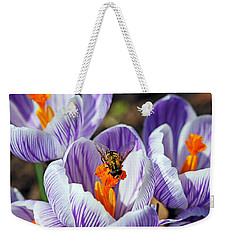 Weekender Tote Bag featuring the photograph Popping Spring Crocus by Debbie Oppermann