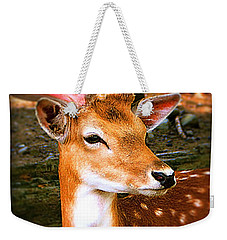 Portrait Male Fallow Deer Weekender Tote Bag
