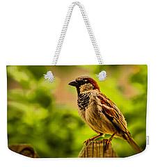 English Sparrow Weekender Tote Bag