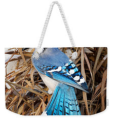 Portrait Of A Blue Jay Square Weekender Tote Bag by Bill Wakeley