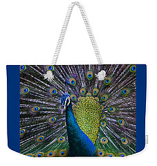 Portrait Of A Peacock Weekender Tote Bag by Venetia Featherstone-Witty