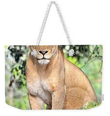 Portrait Of A Proud Lioness Weekender Tote Bag