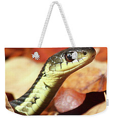 Weekender Tote Bag featuring the photograph Portrait Of A Snake by Doris Potter