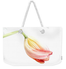 Weekender Tote Bag featuring the photograph Portrait Of A Tulip In Yellow And Pink by Louise Kumpf
