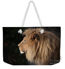 Portrait Of The King Of The Jungle  Weekender Tote Bag by Jim Fitzpatrick