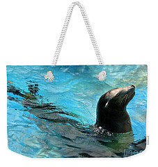 Weekender Tote Bag featuring the photograph Posing Sea Lion by Kristine Merc