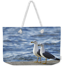 Posing Seagulls Weekender Tote Bag
