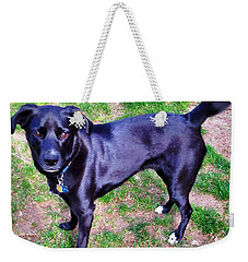 Weekender Tote Bag featuring the photograph Posing Take The Picture Please by Judy Palkimas