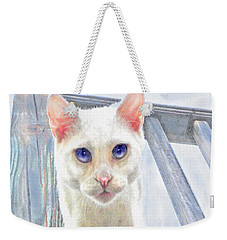 Pounce Weekender Tote Bag by Jane Schnetlage