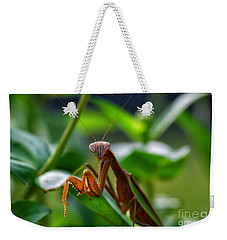Weekender Tote Bag featuring the photograph Praying Mantis by Thomas Woolworth