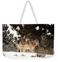Weekender Tote Bag featuring the photograph Predators by Sharon Elliott