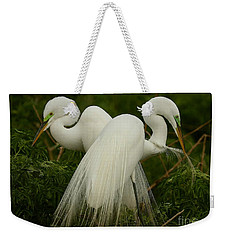 Preening Pair Weekender Tote Bag by Myrna Bradshaw