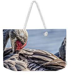 Preening Sandhill Crane Weekender Tote Bag