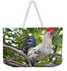 Weekender Tote Bag featuring the photograph Pretty Boy by Erika Weber