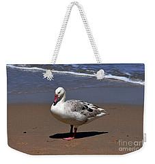 Pretty Goose Posing On Monterey Beach Weekender Tote Bag