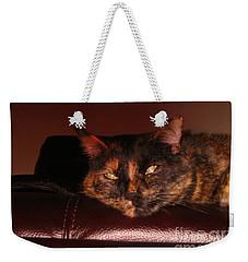 Weekender Tote Bag featuring the photograph Pretty Kitty by Oksana Semenchenko
