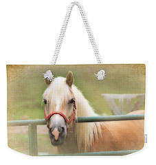 Pretty Palomino Horse Photography Weekender Tote Bag by Eleanor Abramson