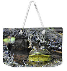 Weekender Tote Bag featuring the photograph Bullfrog by Glenn Gordon