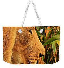 Profiles Of A King Weekender Tote Bag by Laddie Halupa