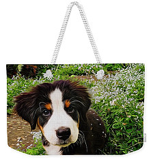 Puppy Art - Little Lily Weekender Tote Bag by Jordan Blackstone