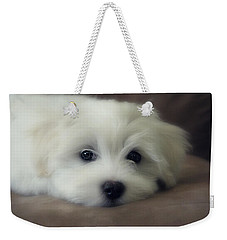 Puppy Eyes Weekender Tote Bag by Melanie Lankford Photography