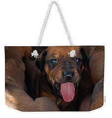 Puppy Weekender Tote Bag by Mim White