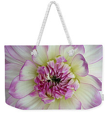 Weekender Tote Bag featuring the photograph Purple And Cream Dahlia by Jeannie Rhode