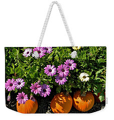 Weekender Tote Bag featuring the photograph Purple Daisies And A Touch Of Orange by Jean Goodwin Brooks