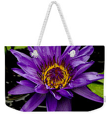 Weekender Tote Bag featuring the photograph Purple Lotus Water Lilies by James C Thomas