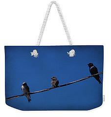 Purple Martin Trio Weekender Tote Bag