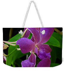 Purple Over Green Weekender Tote Bag by Greg Allore
