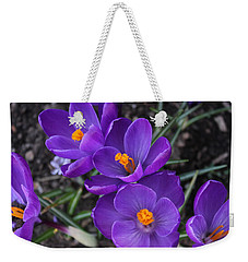 Weekender Tote Bag featuring the photograph Purple Passion by Judy Palkimas