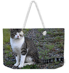 Purr-fectly Posed Weekender Tote Bag by Kent Lorentzen