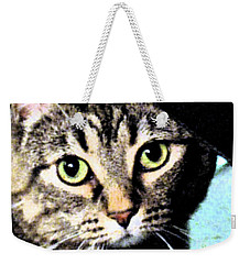 Weekender Tote Bag featuring the photograph Purrfectly Bright Eyed by Nina Silver