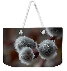 Weekender Tote Bag featuring the photograph Pussy Willow by Joel Loftus