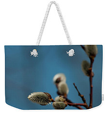 Pussy Willow... Weekender Tote Bag