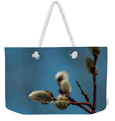 Pussy Willow... Weekender Tote Bag