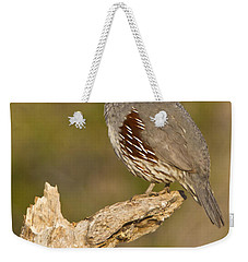 Weekender Tote Bag featuring the photograph Quail On A Stick by Bryan Keil