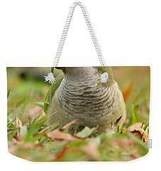 Quaker Parrot #3 Weekender Tote Bag