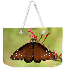 Queen Butterfly Weekender Tote Bag by Meg Rousher