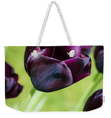 Queen Of The Night Black Tulips Weekender Tote Bag