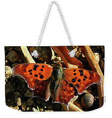 Weekender Tote Bag featuring the photograph Question Mark Butterfly by Donna Brown
