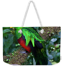 Quetzal Weekender Tote Bag