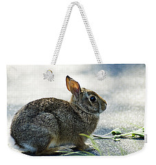 Weekender Tote Bag featuring the photograph Rabbit by Yulia Kazansky
