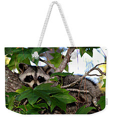 Raccoon Eyes Weekender Tote Bag