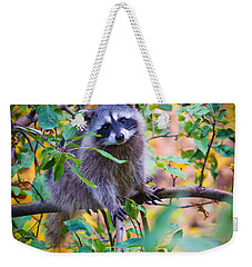 Raccoon Weekender Tote Bag by Inge Johnsson