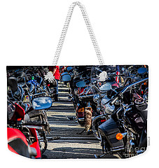Weekender Tote Bag featuring the photograph Raccoon Tail by Eleanor Abramson
