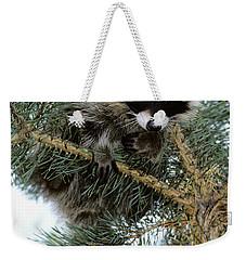 Raccoon Weekender Tote Bag